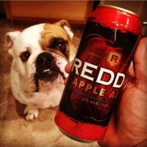 Reed's Apple Ale Review